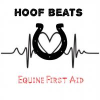 Hoof beats equine first aid