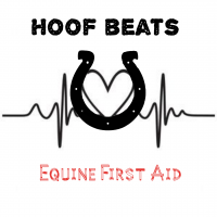 Hoof beats equine first aid