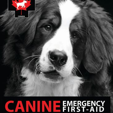 Canine health and emergency first aid